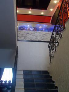 gallery_20669_1286_1757438.jpg