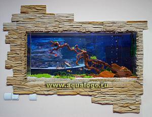 gallery_20669_1307_83978.jpg