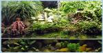 tn_gallery_11498_1389_69310.jpg