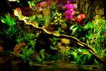 tn_gallery_11498_1389_95109.jpg