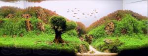 gallery_25364_1701_30777.jpg