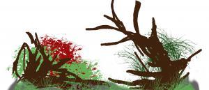 gallery_21125_1830_980320.jpg