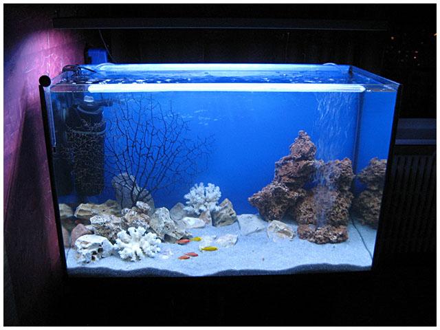 Как сделать подсветку для аквариум 725