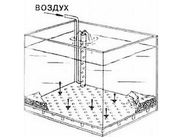 Как сделать донный фильтр в аквариум своими руками