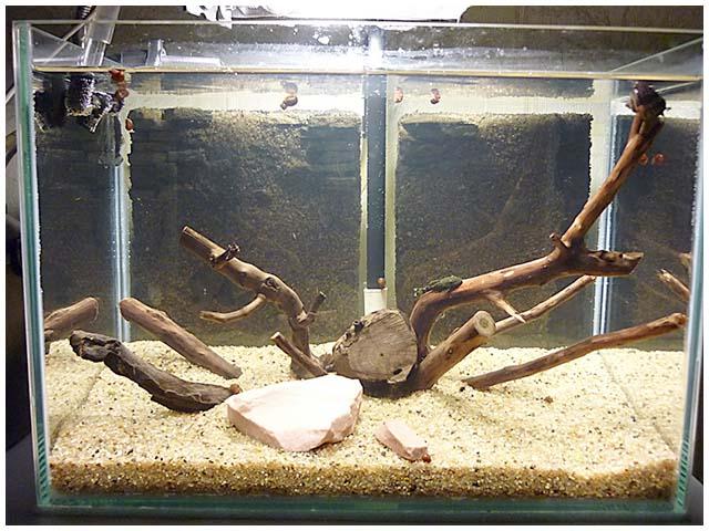 Контроллеры для аквариума своими руками