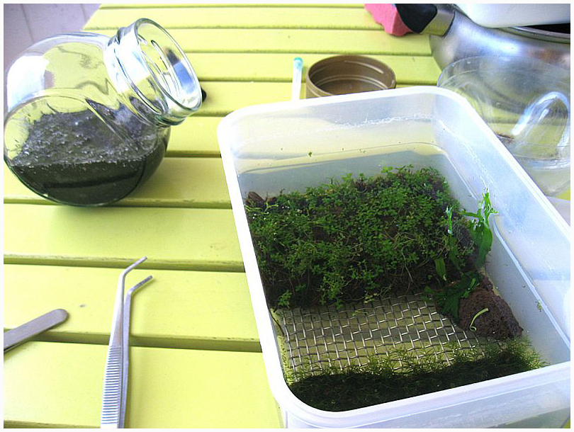 Для выращивания аквариумных растений 217