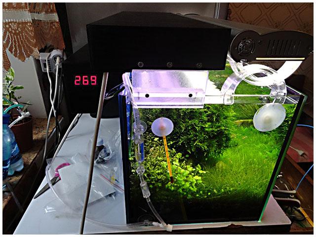 Как сделать охлаждение аквариума