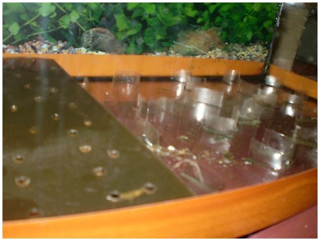 Как заклеить аквариум