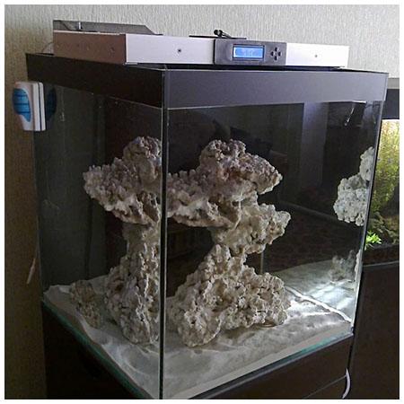 Пенник для морского аквариума