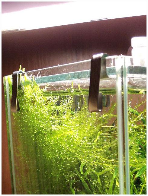 Аквариум из стекла своими руками: подробная пошаговая
