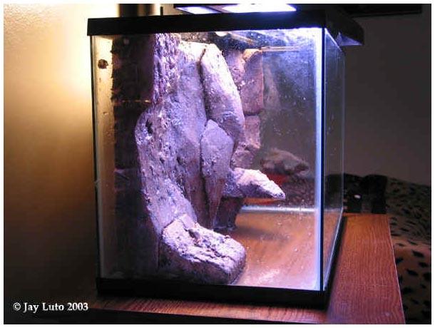Объемный аквариум своими руками фото