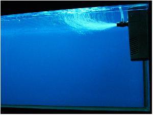 Купите подходящий для вашего аквариума внутренний фильтр.  Включите фильтр в розетку для того, чтобы он начал...