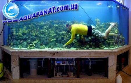 Двойное дно в аквариуме